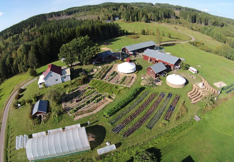 Permaculture Area In Sweden 2015 Organic Farm